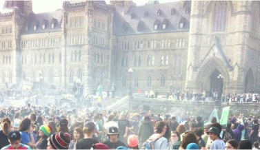 420 Blog Series: Fill the Hill Ottawa